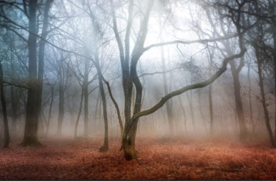 photo paysage 4