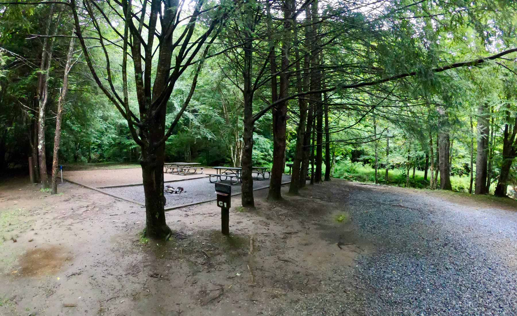 Group campground in Roan Mountain State Park, Tennessee