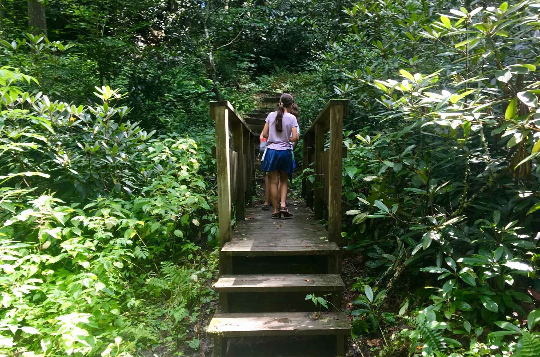 Two teens walking on a bridge on the Cloudland Nature Trail in Roan Mountain State Park, Tennessee
