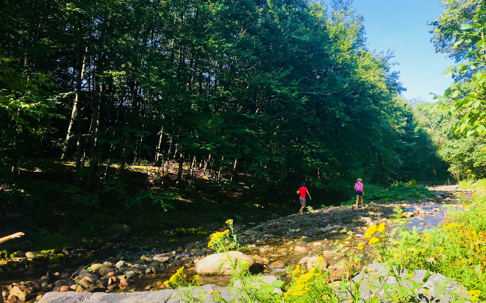 Two girls playin in Woodland Valley Creek near the Woodland Valley Campground in the Catskill Mountains of New York