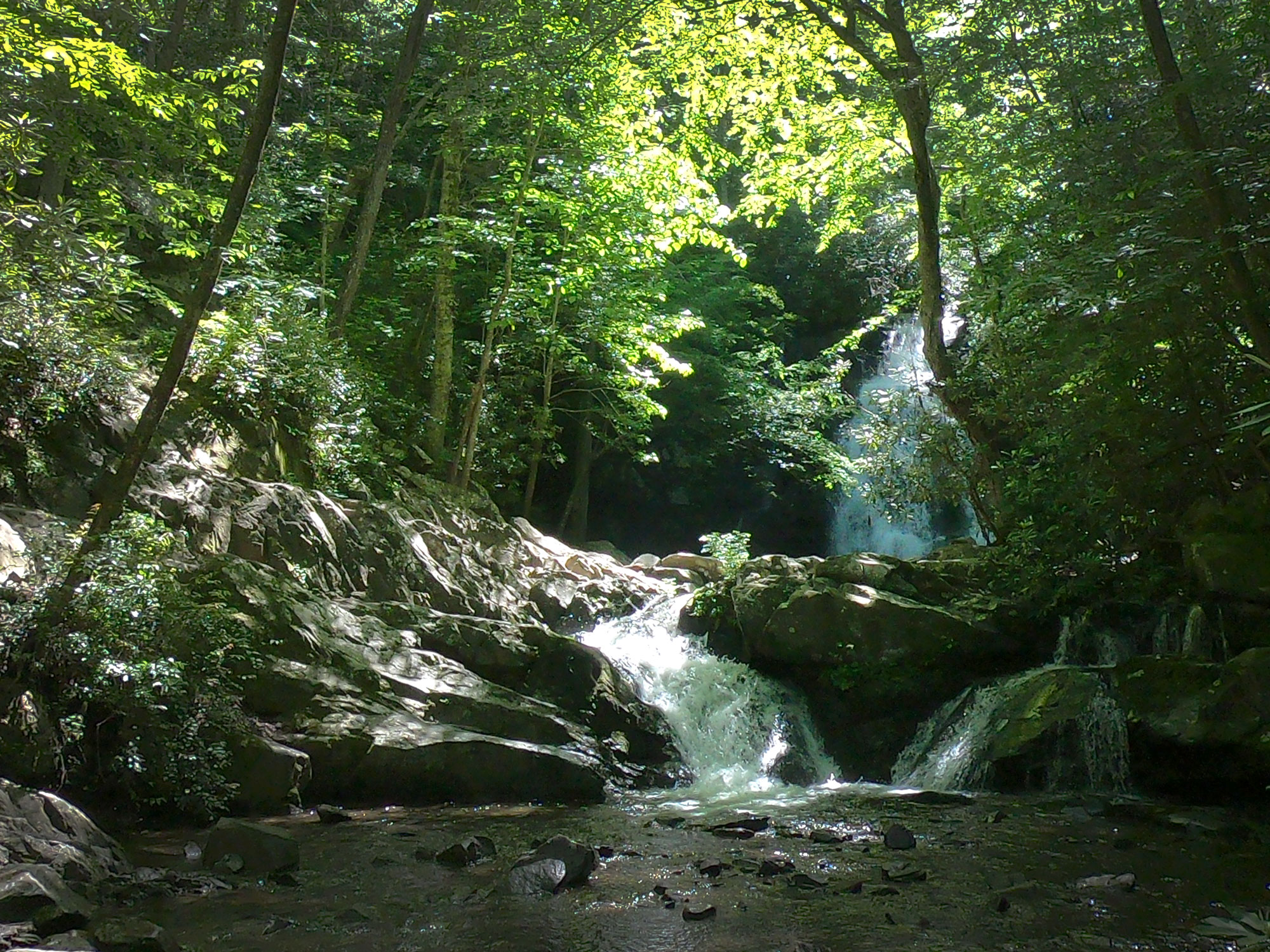 Spruce Flat Falls waterfall in Tremont, Great Smoky Mountains National Park, Tennessee