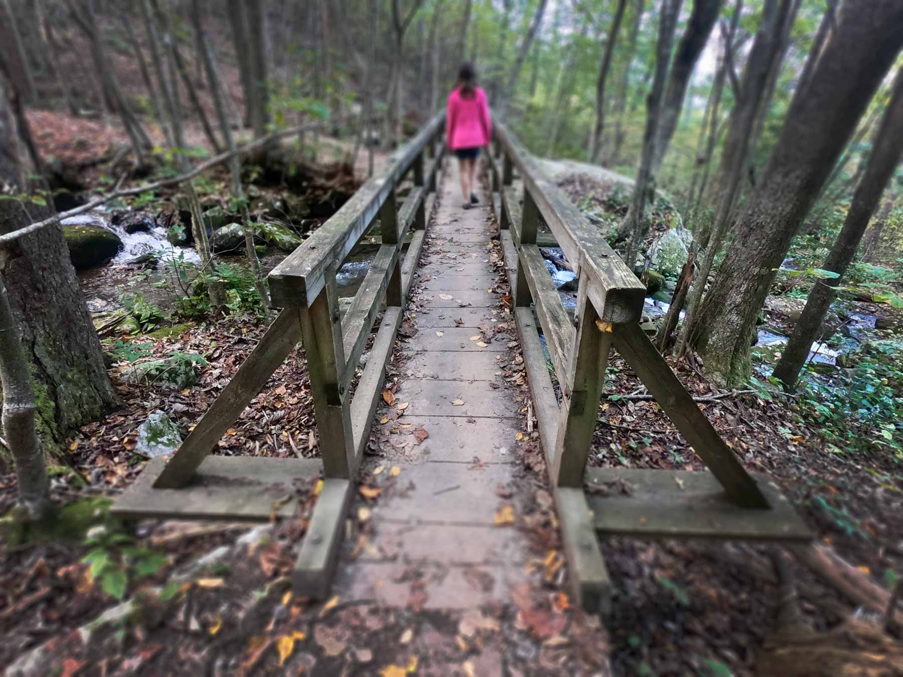 Girl crossing a bridge on the Apple Orchard Falls Trail off the Blue Ridge Parkway, Virginia