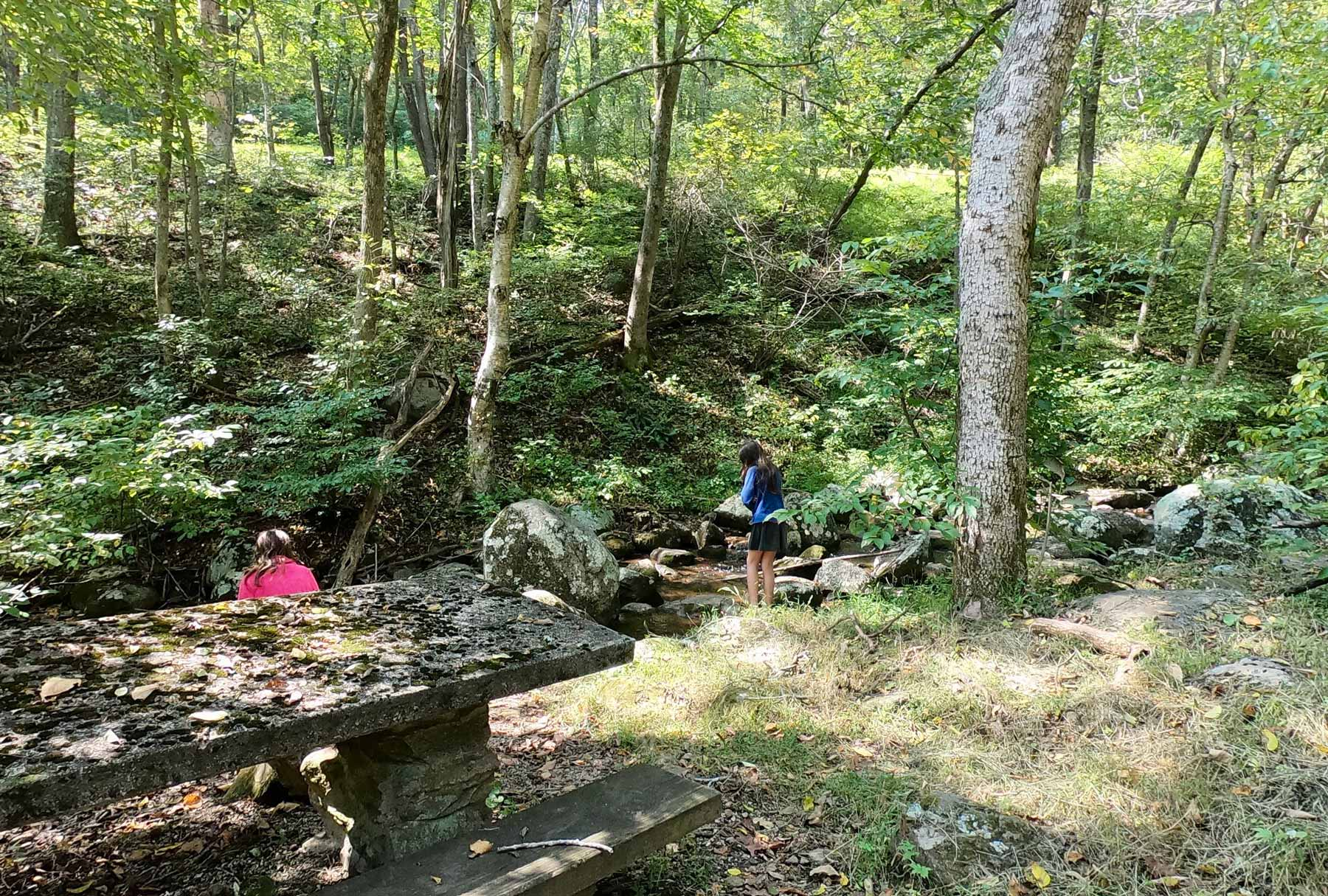 Two girls at Peaks of Otter Picnic Area in Virginia along the Little Stony Creek