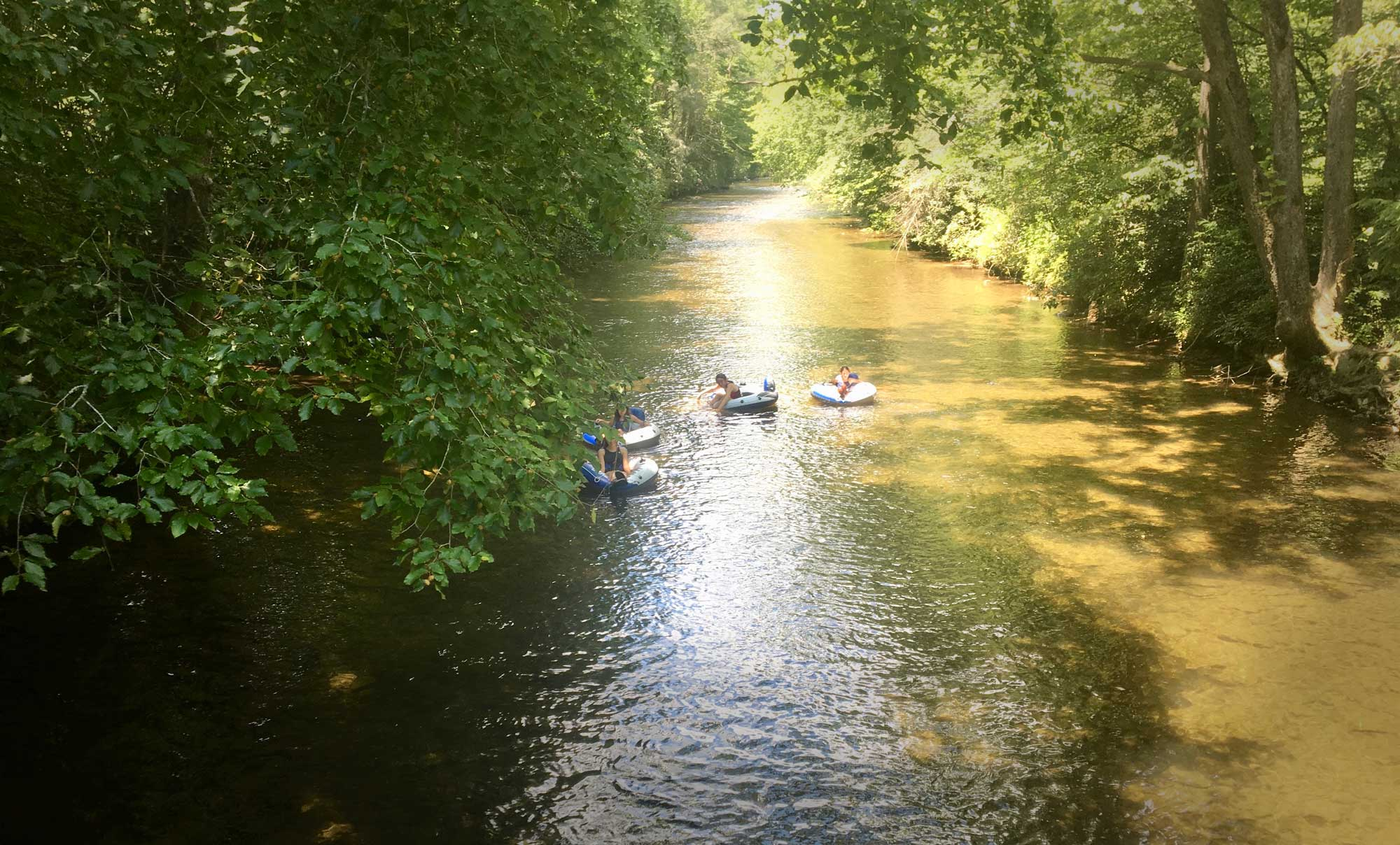 Four children tubing down Davidson River in Pisgah National Forest, near Davidson River Campground, North Carolina