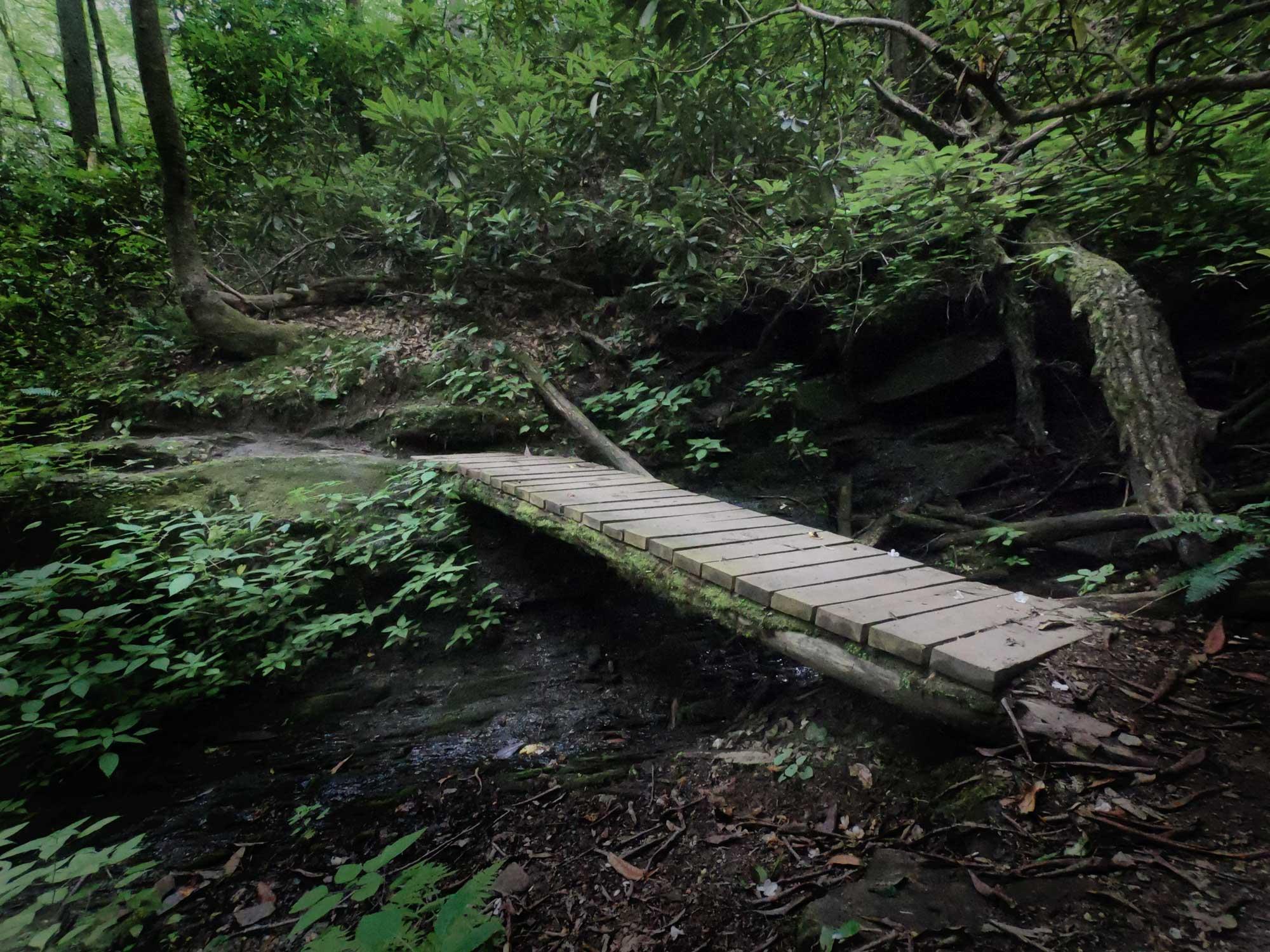 Footbridge on North Slope Loop Trail in Davidson River Campground, North Carolina