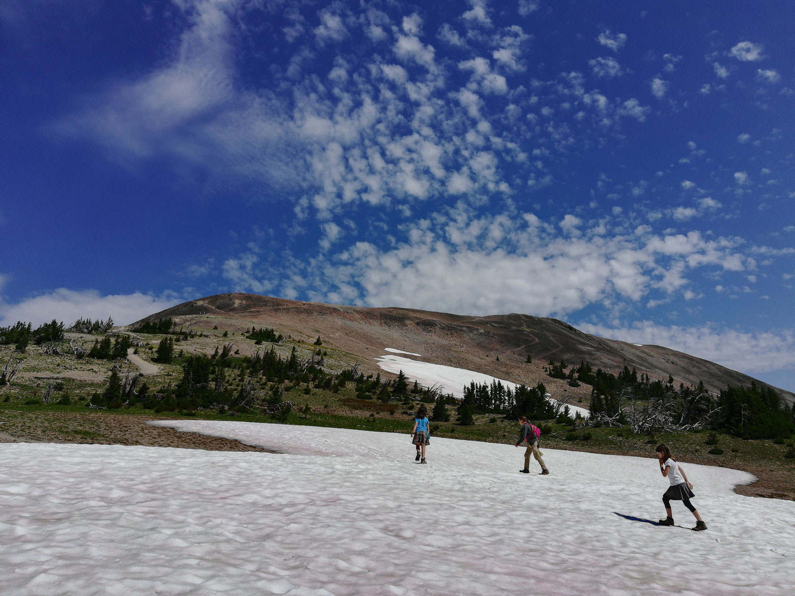 Snowpack on the trail to Avalanche Peak in Yellowstone National Park