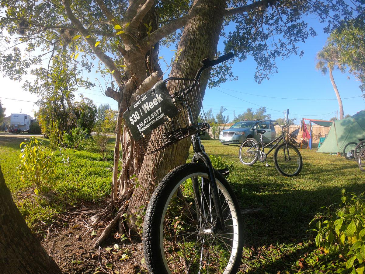 Finnimores rental bike leaning against tree at Periwinkle Park campsite on Sanibel Island, FL