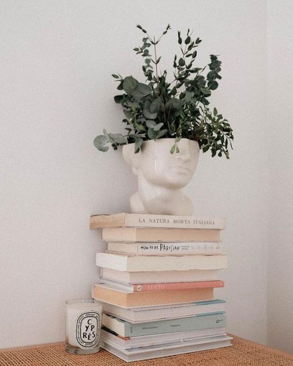 Pile de livre avec un pot de fleur