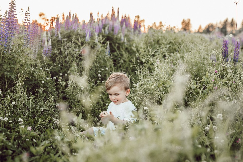 a toddler in a field of flowers