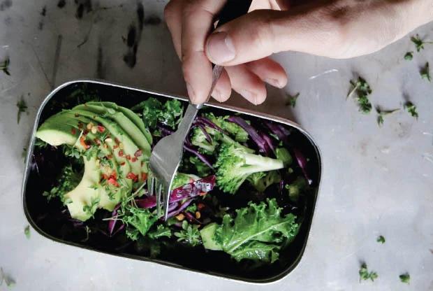 100+ Lunchbox Ideas