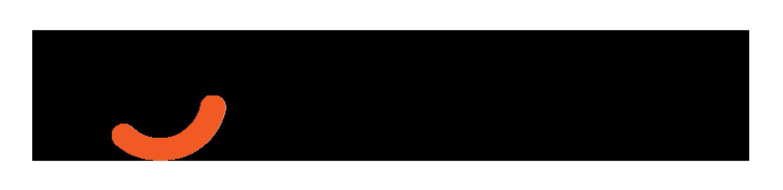 Vincere logo