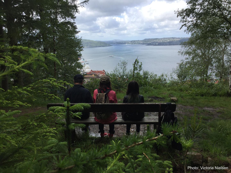 Utsikt over fjorden