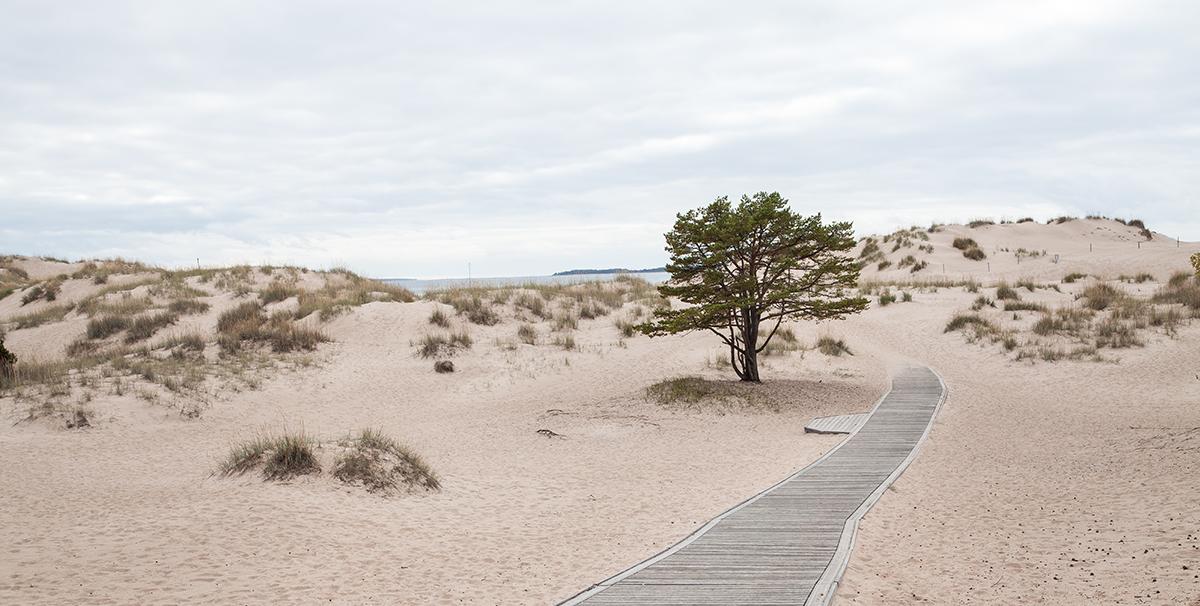 Yyterin hiekkarannat
