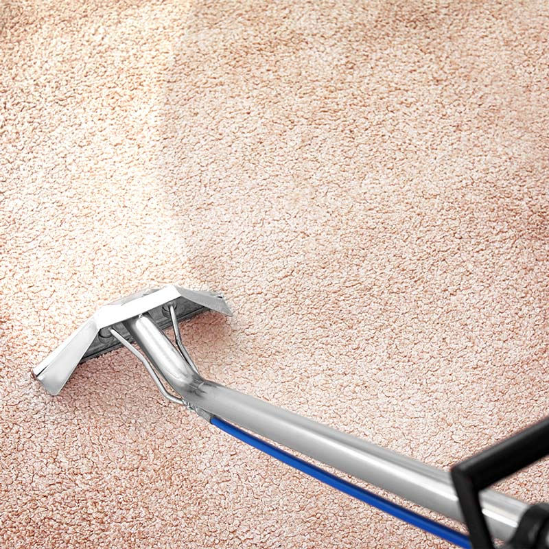 Professional carpet cleaning in St. Augustine, FL