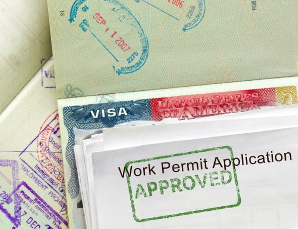 Service Card - Work Permit