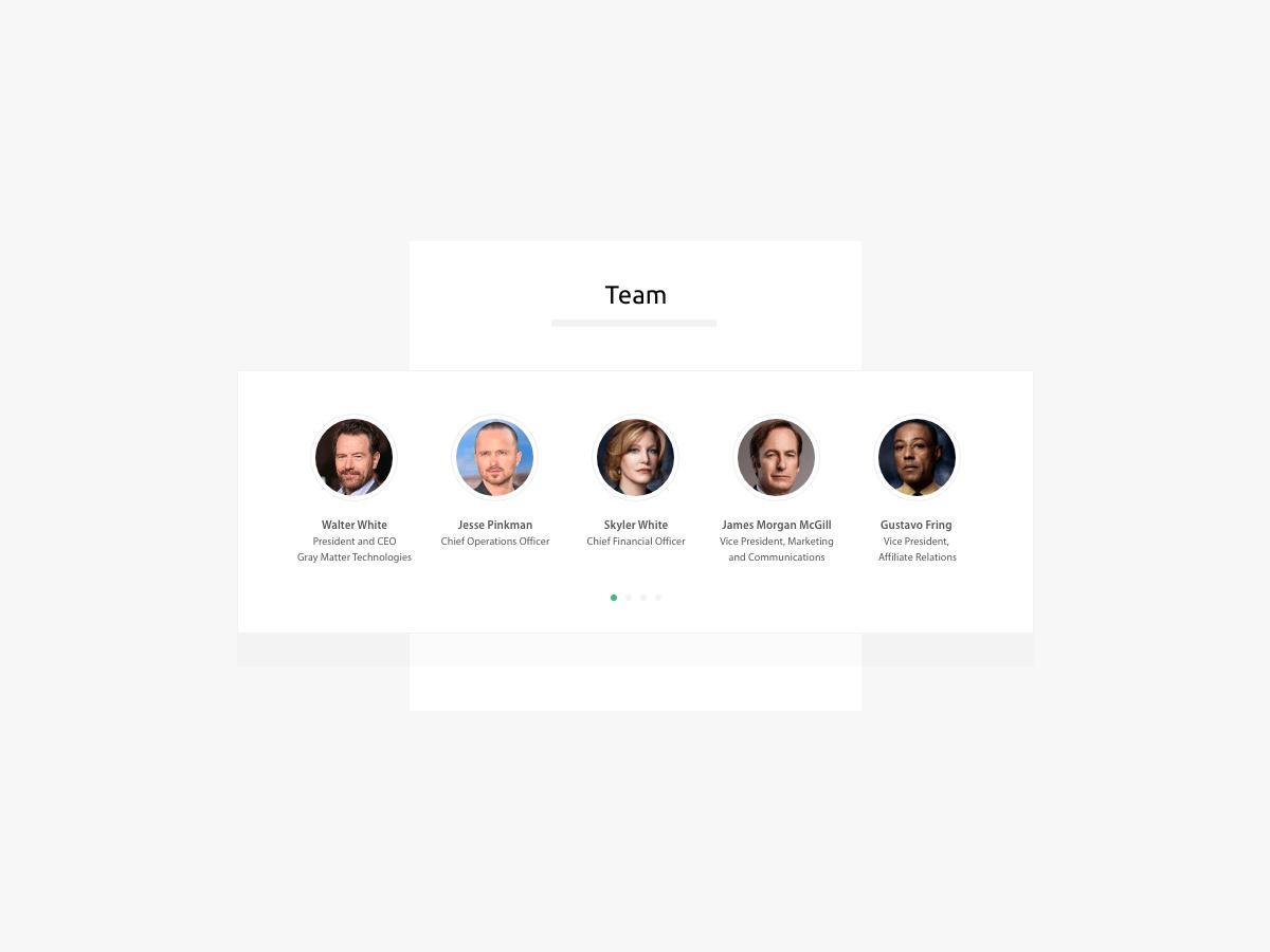 Service Provider Profile - Slide 5