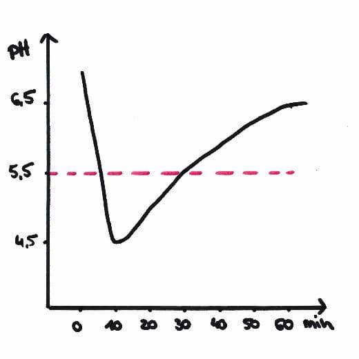 pH-Kurve im Mund beim Essen. der kritische Wert von unter 5,5 ist nach 10 Minuten erreicht
