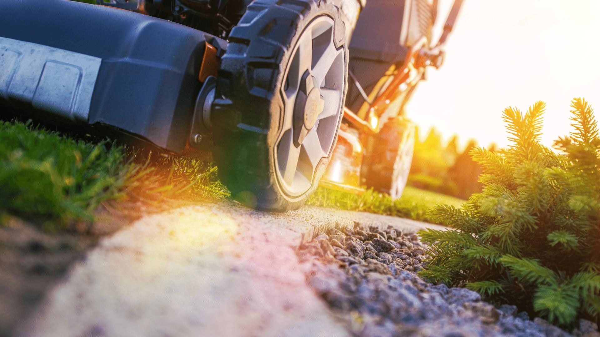 Closeup of lawnmower cutting grass around landscaping