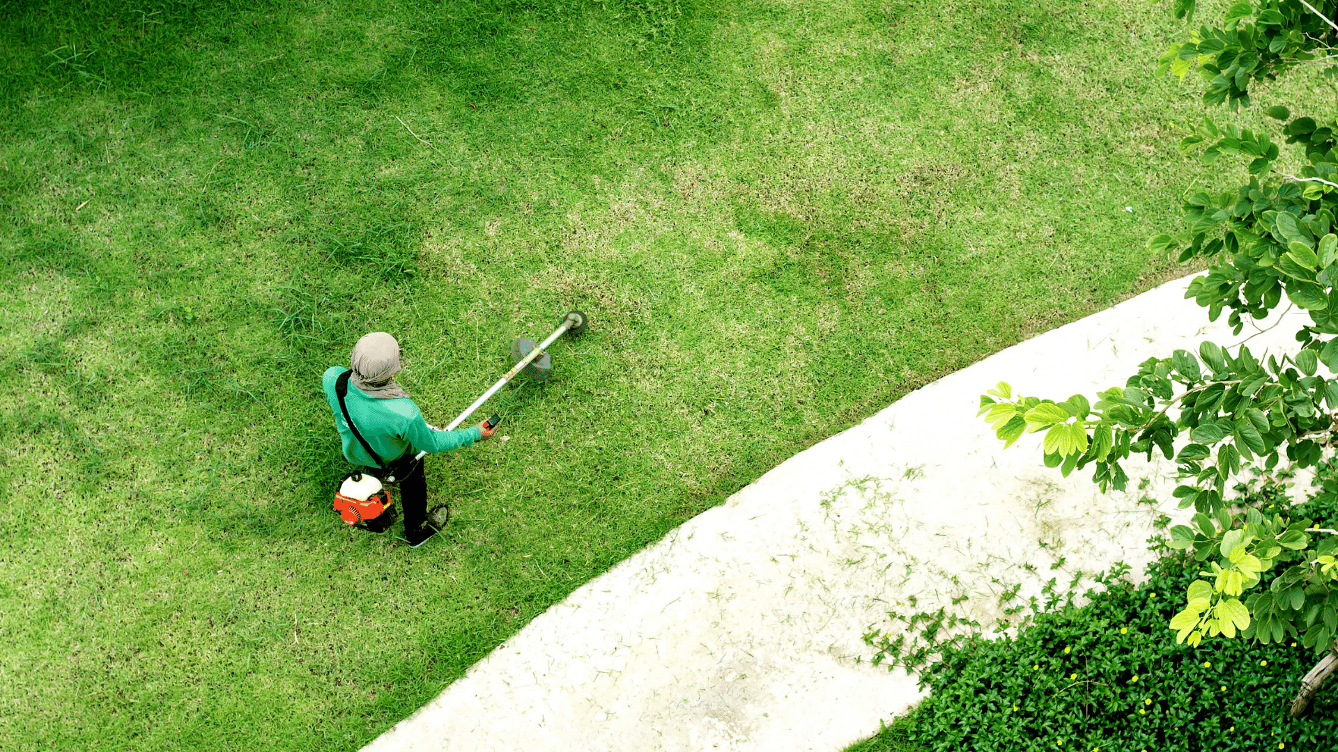 Cutting grass with edger