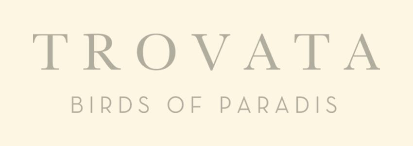 Sunnyside works with Trovata Birds of Paradis