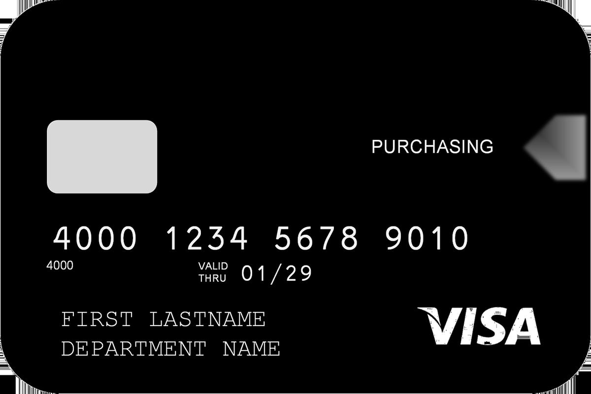 Visa Incentive Card