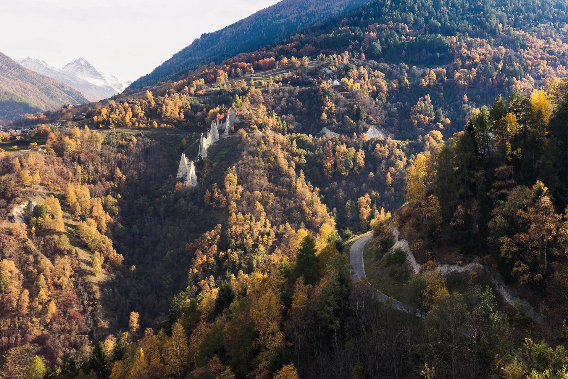 mountain forest hotel eringer