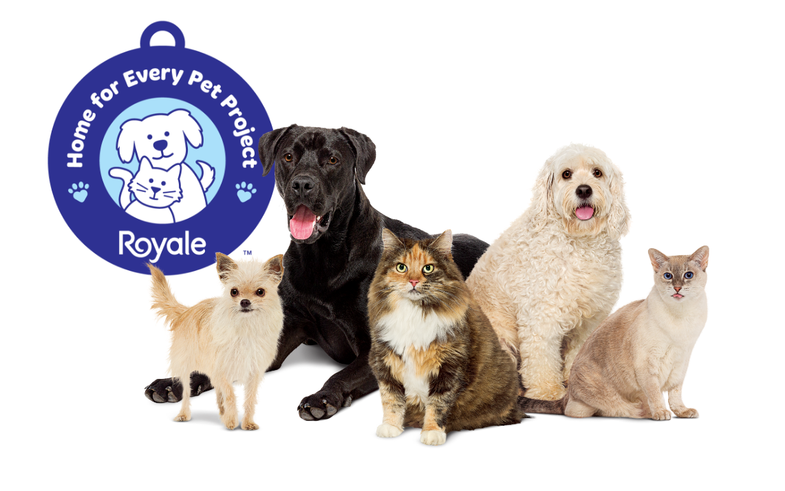 Royale National Adopt a Shelter Pet Day - Friday April 30th