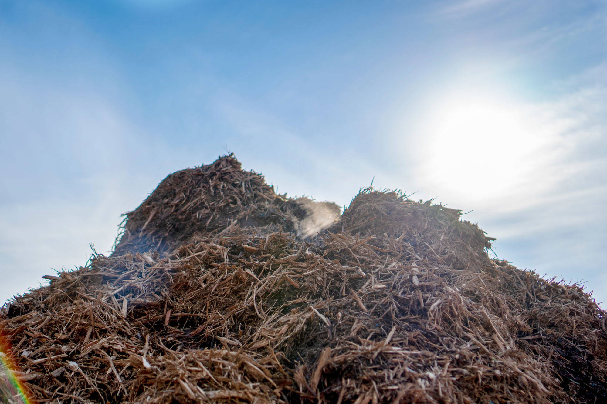 Pile of mulch under bright sun
