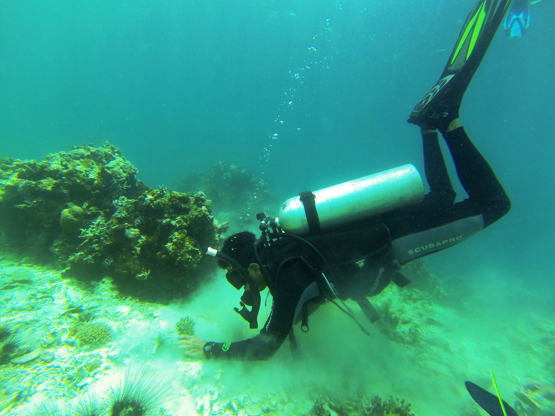 Diver on seabed