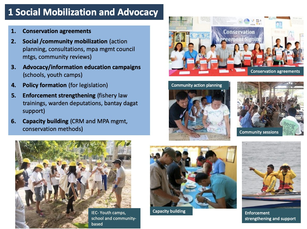Social mobilization and advocacy