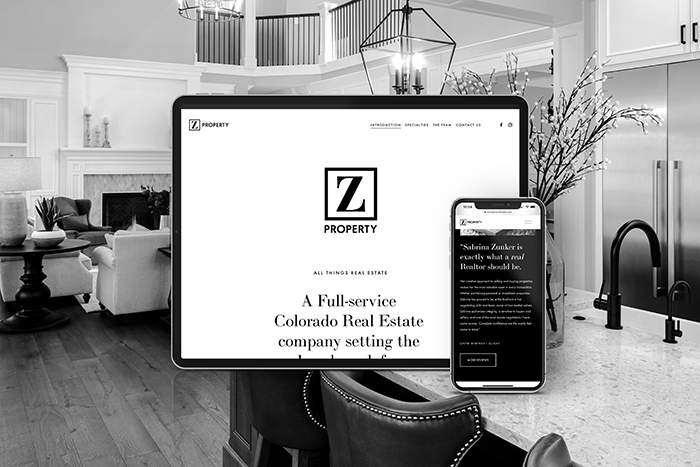 Z Property Colorado website by CGDL