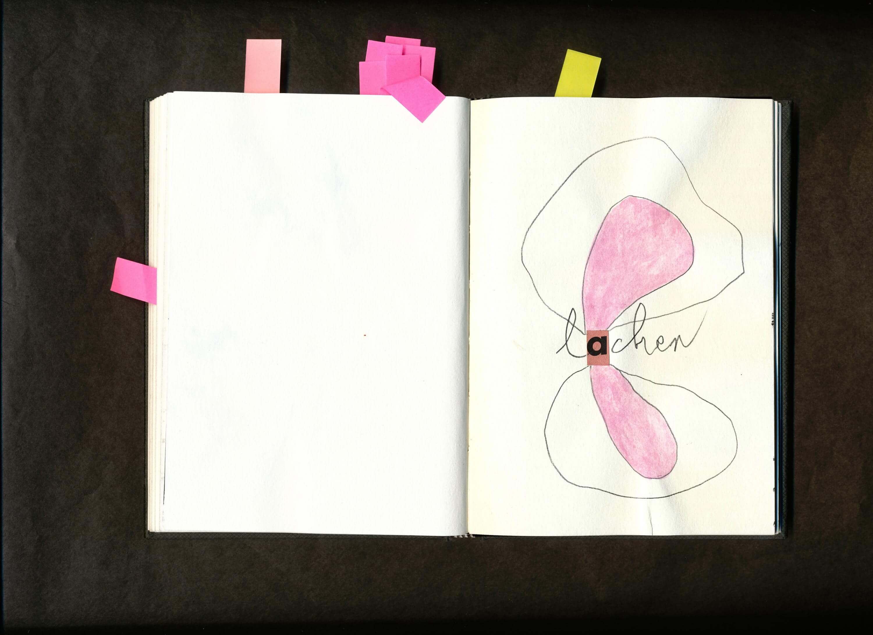 Open spreads of sketchbook, rough line drawing with words and beautifully placed swatches of color.