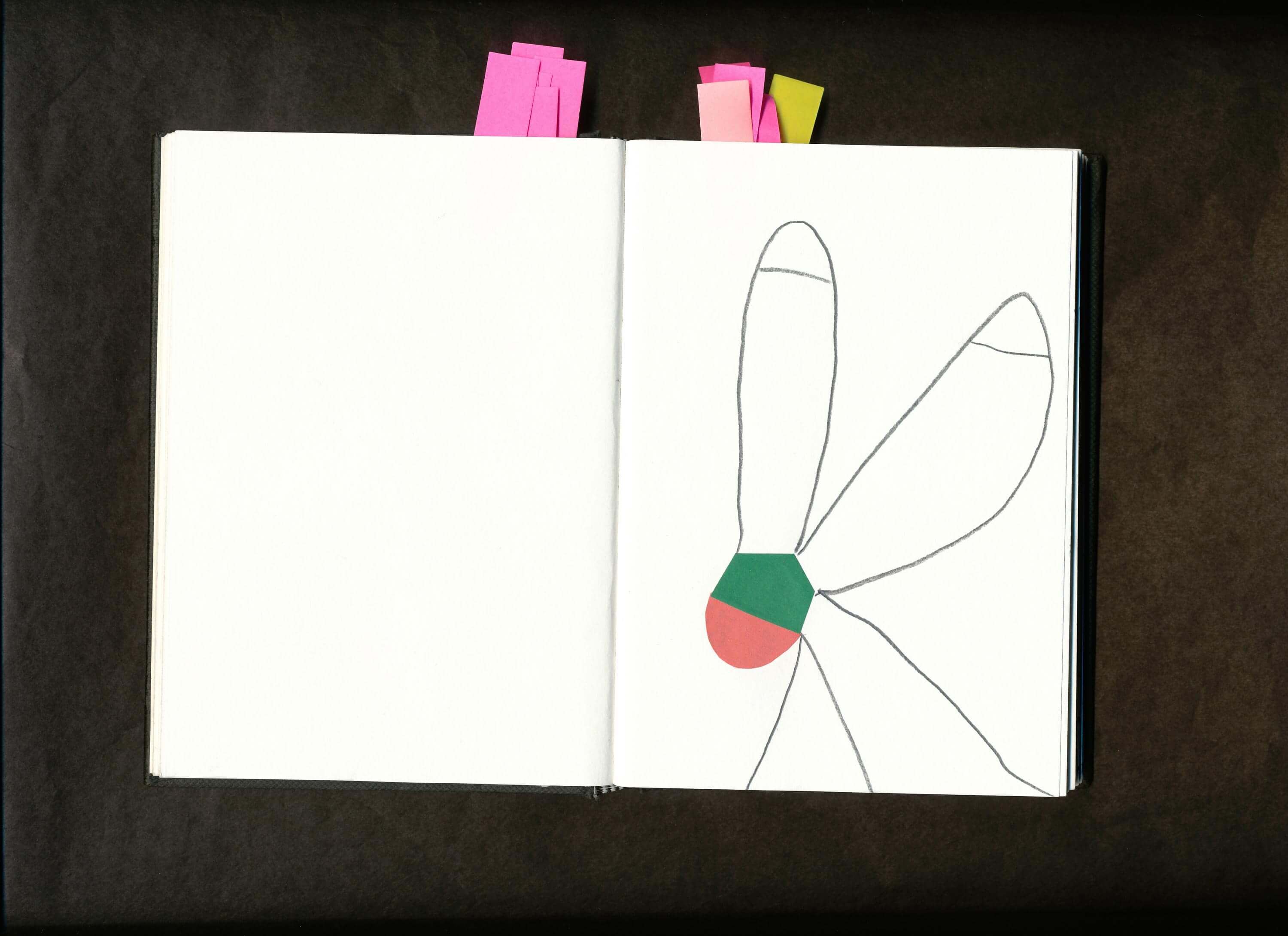 Open spreads of sketchbook, rough line drawing with words and beautifully placed swatches of color.‍