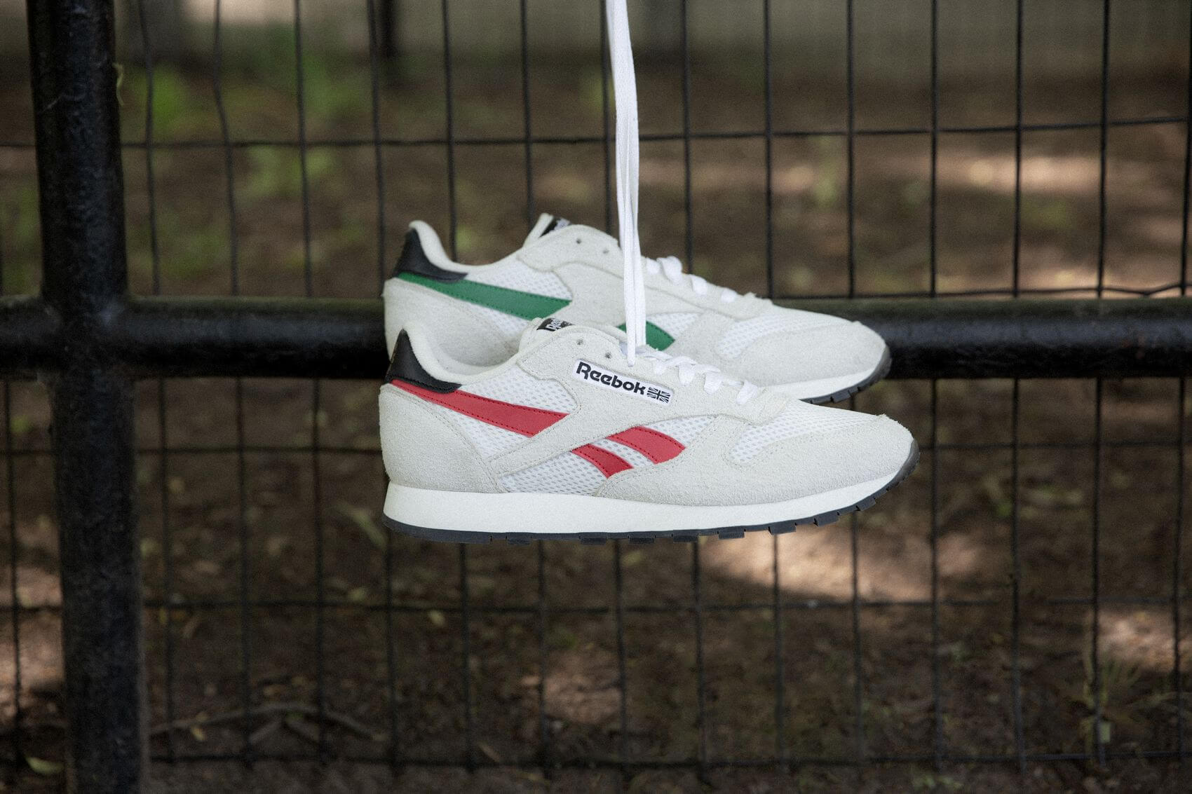 Human Rights Now! - Reebok - Classic Leather