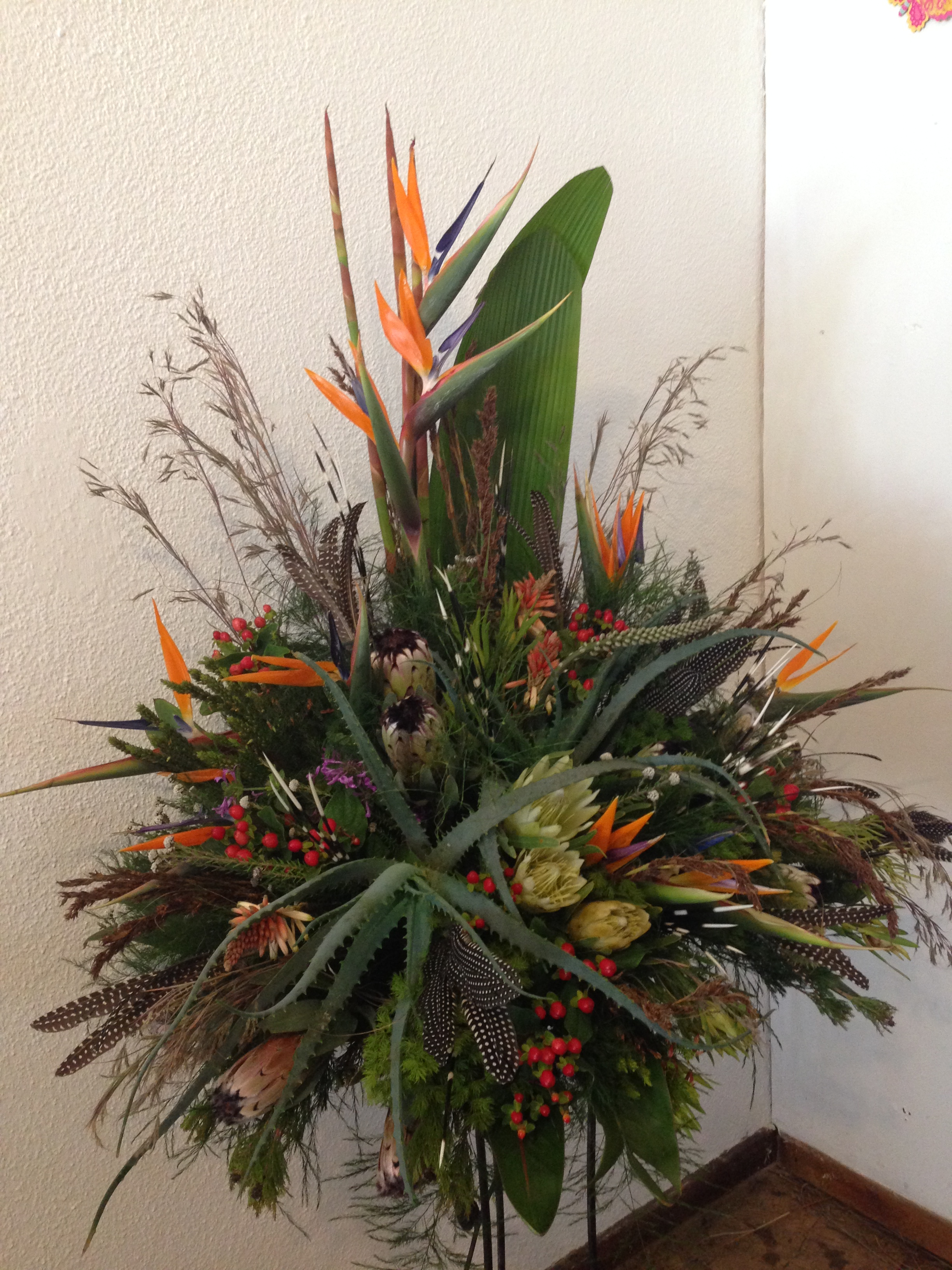 proteas, aloes, grasses and wild flower creation