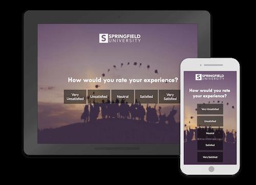 website survey example