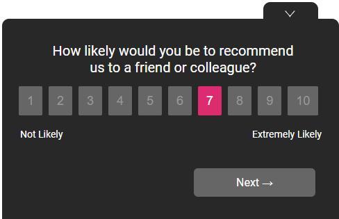 NPS survey theme example