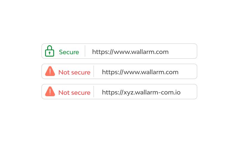 URL SPOOFING
