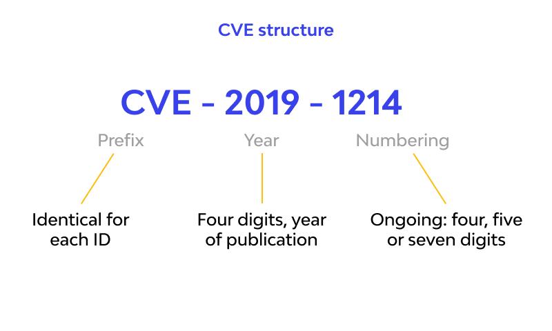 What is a CVE Identifier