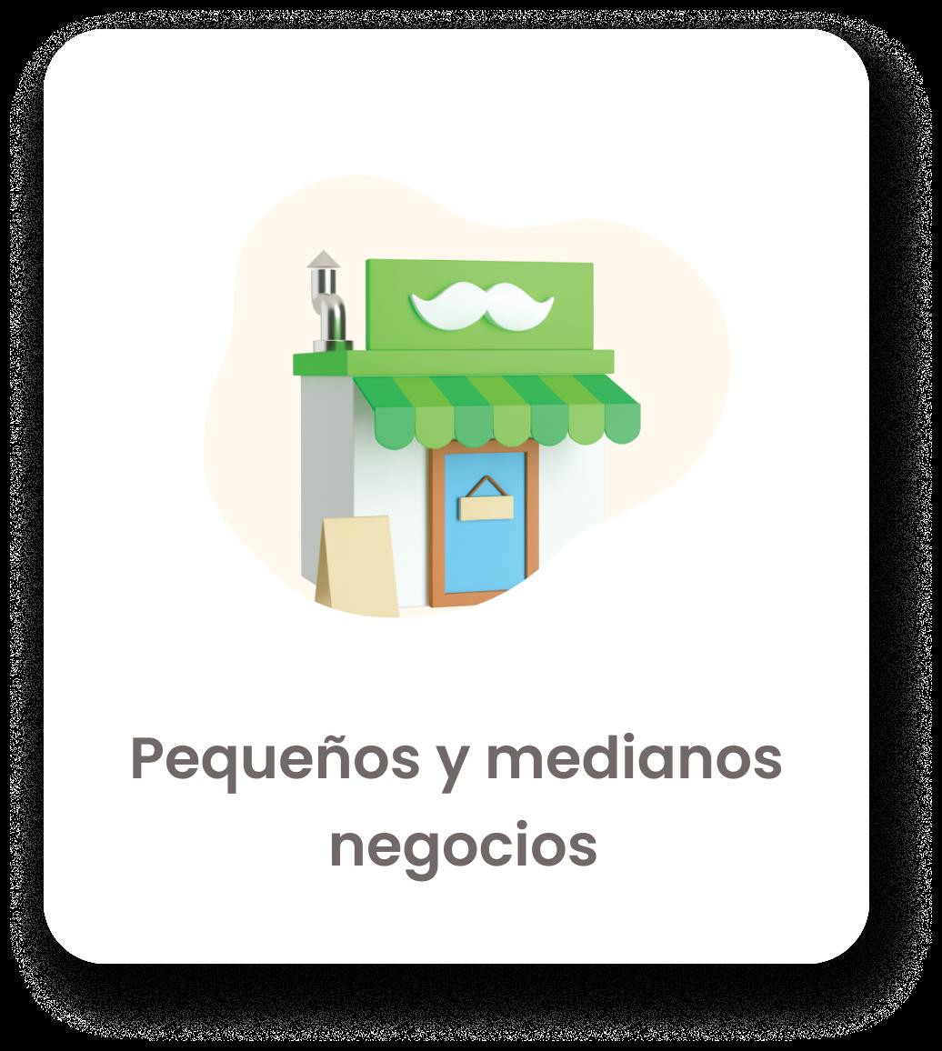 pequeños y medianos negocios