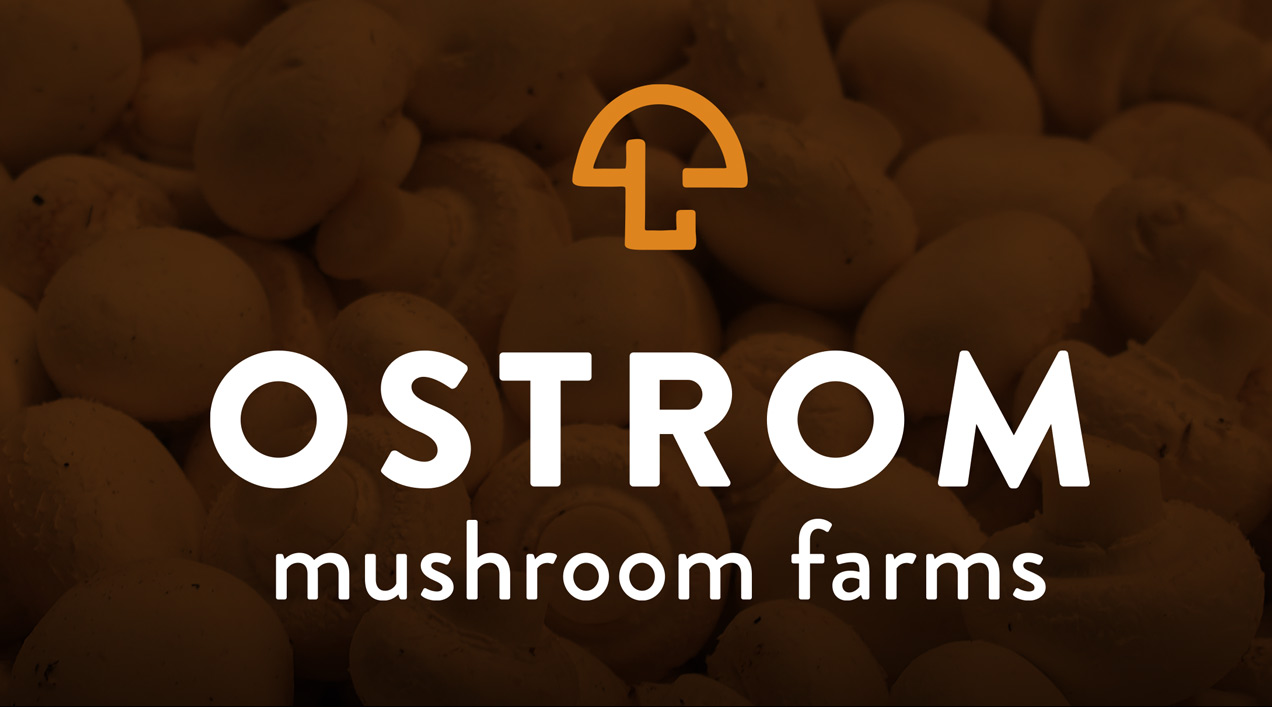 New Ostrom Mushroom Farms logo by Rusty George Creative by Rusty George Creative
