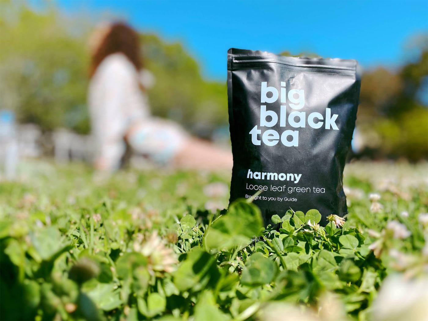 A bag of big black tea sitting on a bench
