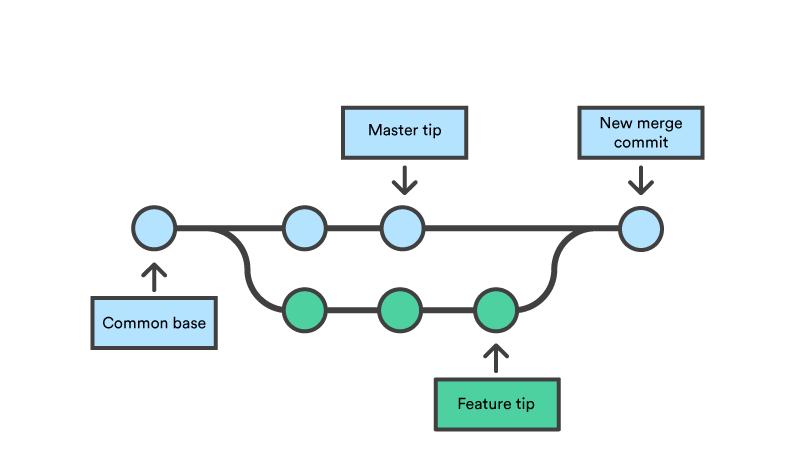 Branching visualized