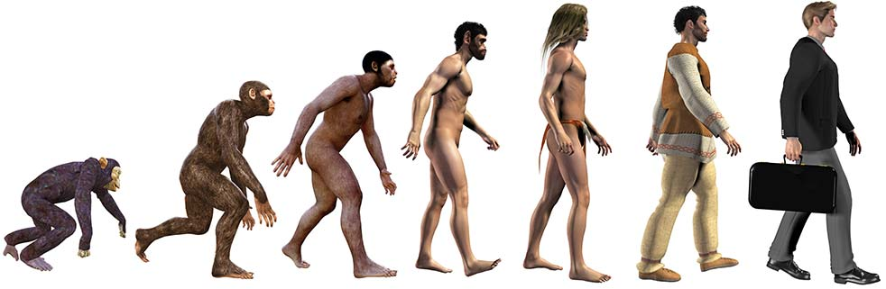 Bible: Man not created from apes