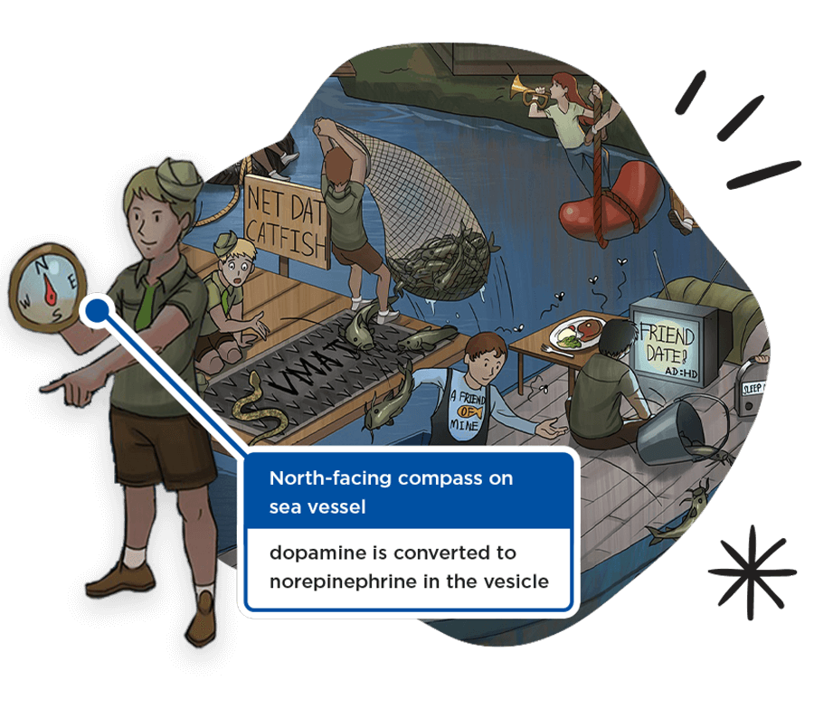 Sketchy drawing featuring a north-facing compass on a sea vessel, which symbolizes conversion to norepinephrine in the vesicles