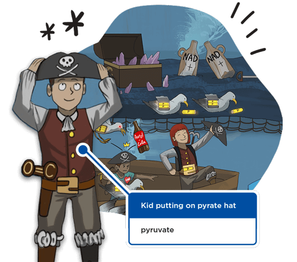 Sketchy drawing of a kid putting on a pirate hat, symbolizing the molecule pyruvate.
