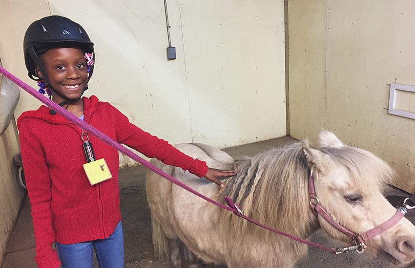 Equestrian Therapy