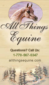 All Things Equine