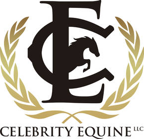 Celebrity Equine