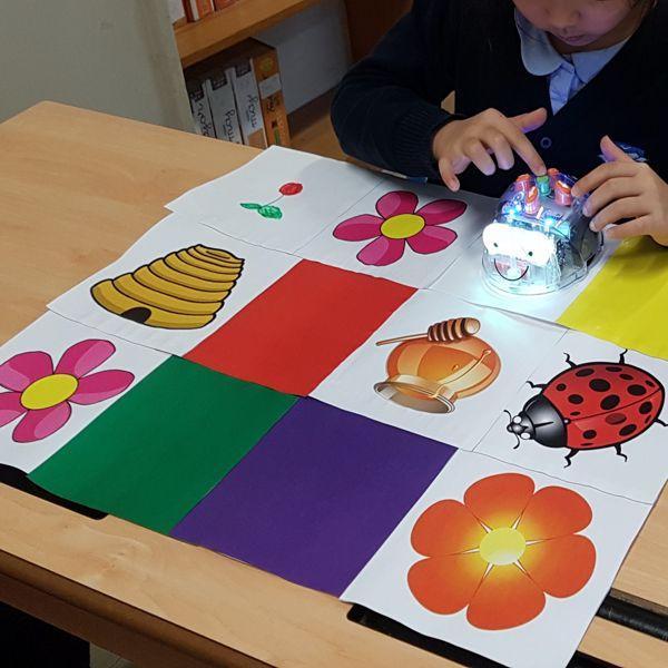 Projet Bee Bot, programmation pour enfants